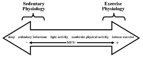 blog-Sedentary-continuum211