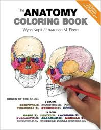anatomy-coloring-book